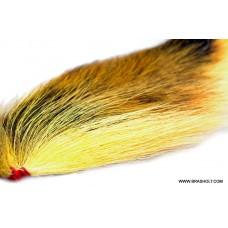 Bucktail Fl. Orange