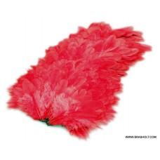 Futurefly American Hen Red