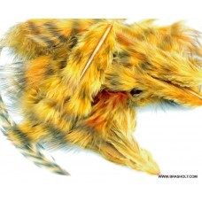 Grizzly marabou Ginger