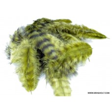 Grizzly marabou Olive