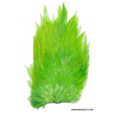 Keough hane saddle farve Green